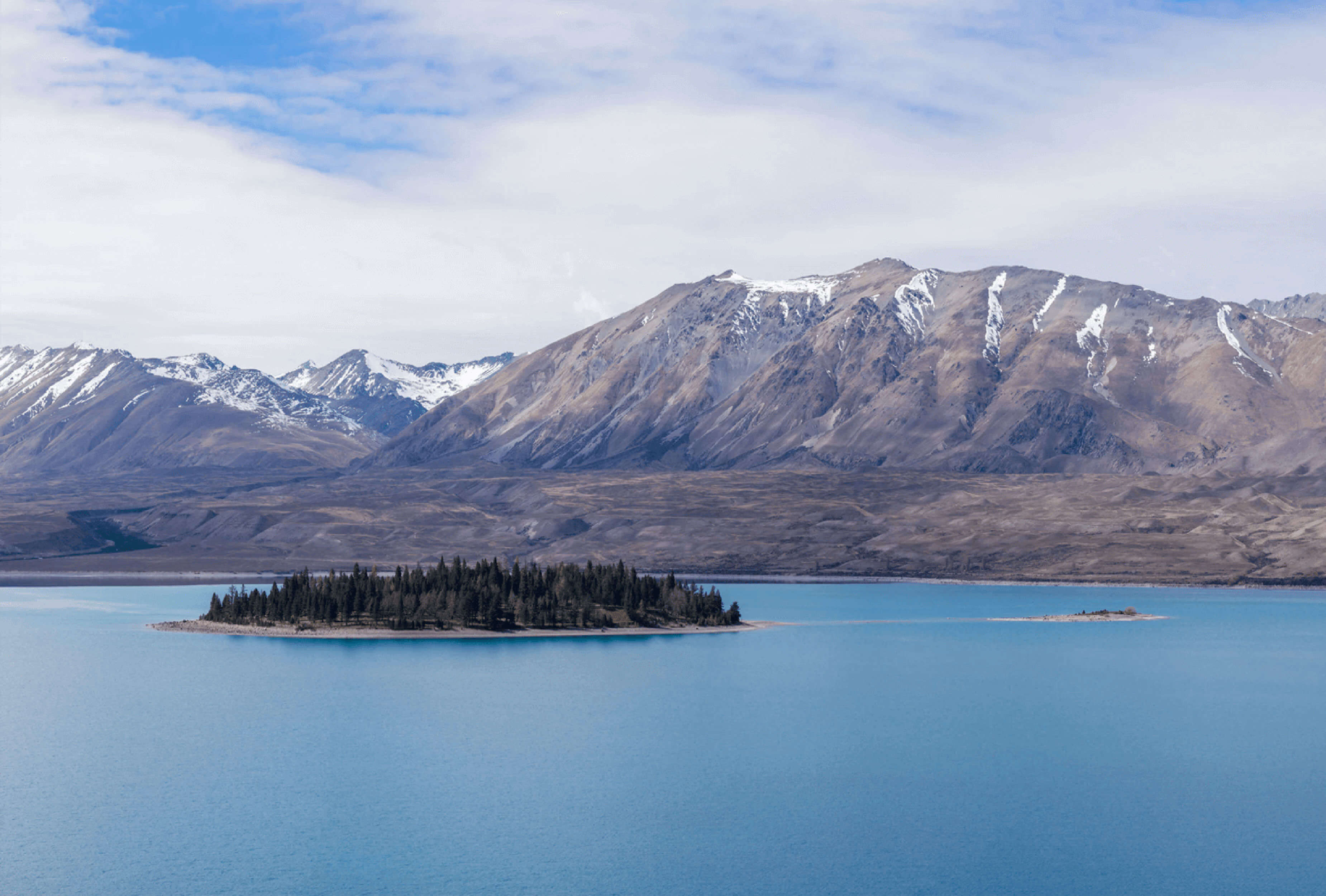 Image of Matariki Island covered with pine trees in the middle of Lake Tekapo with mountains in background